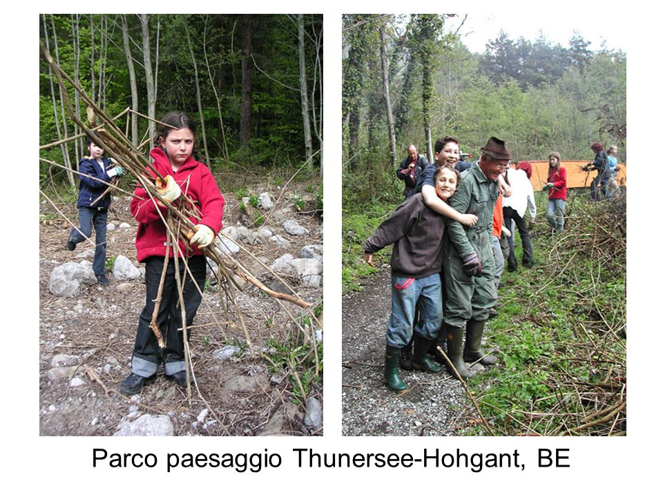 Parco paesaggio Thunersee-Hohgant, BE