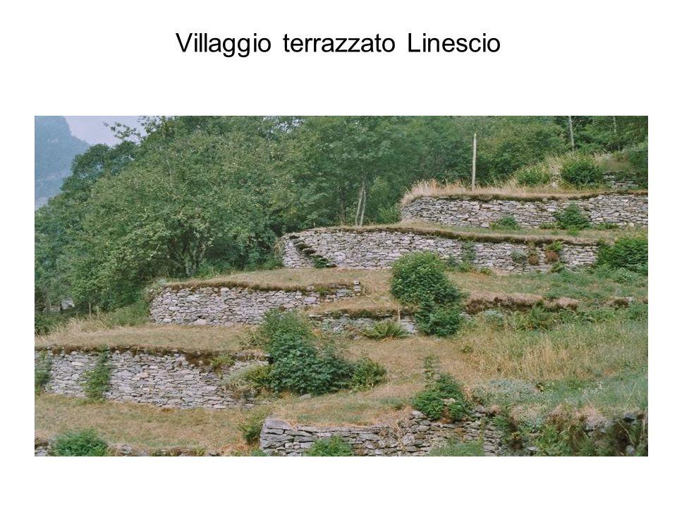 Villaggio terrazzato Linescio