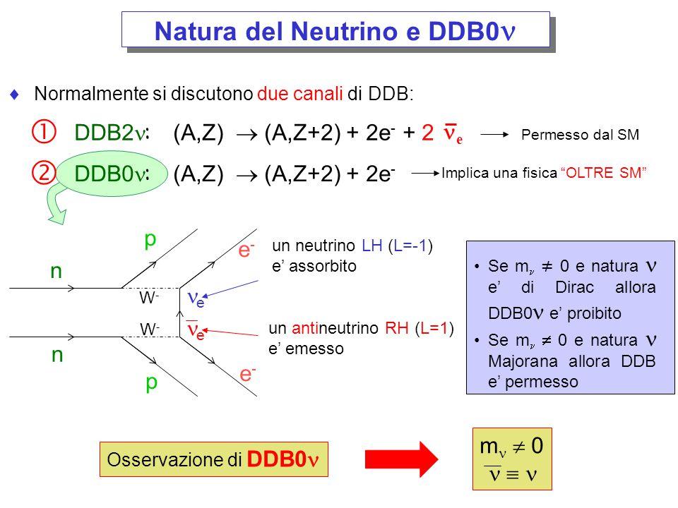 Natura del Neutrino e DDB0n