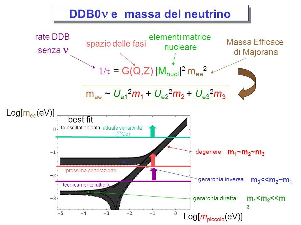 DDB0n e massa del neutrino