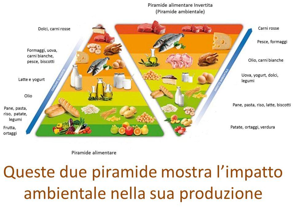 Queste due piramide mostra l'impatto ambientale nella sua produzione