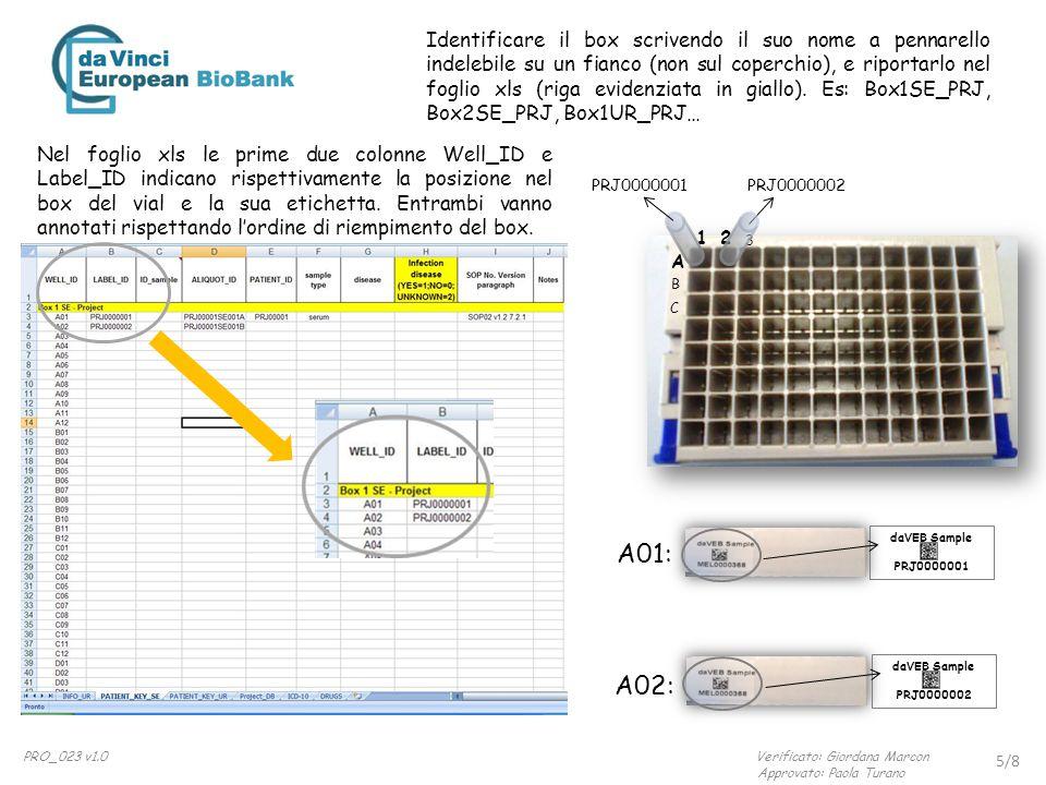 Identificare il box scrivendo il suo nome a pennarello indelebile su un fianco (non sul coperchio), e riportarlo nel foglio xls (riga evidenziata in giallo). Es: Box1SE_PRJ, Box2SE_PRJ, Box1UR_PRJ…