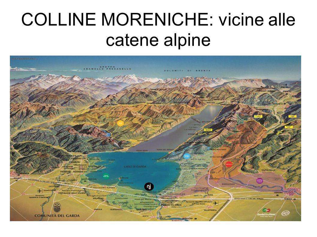 COLLINE MORENICHE: vicine alle catene alpine