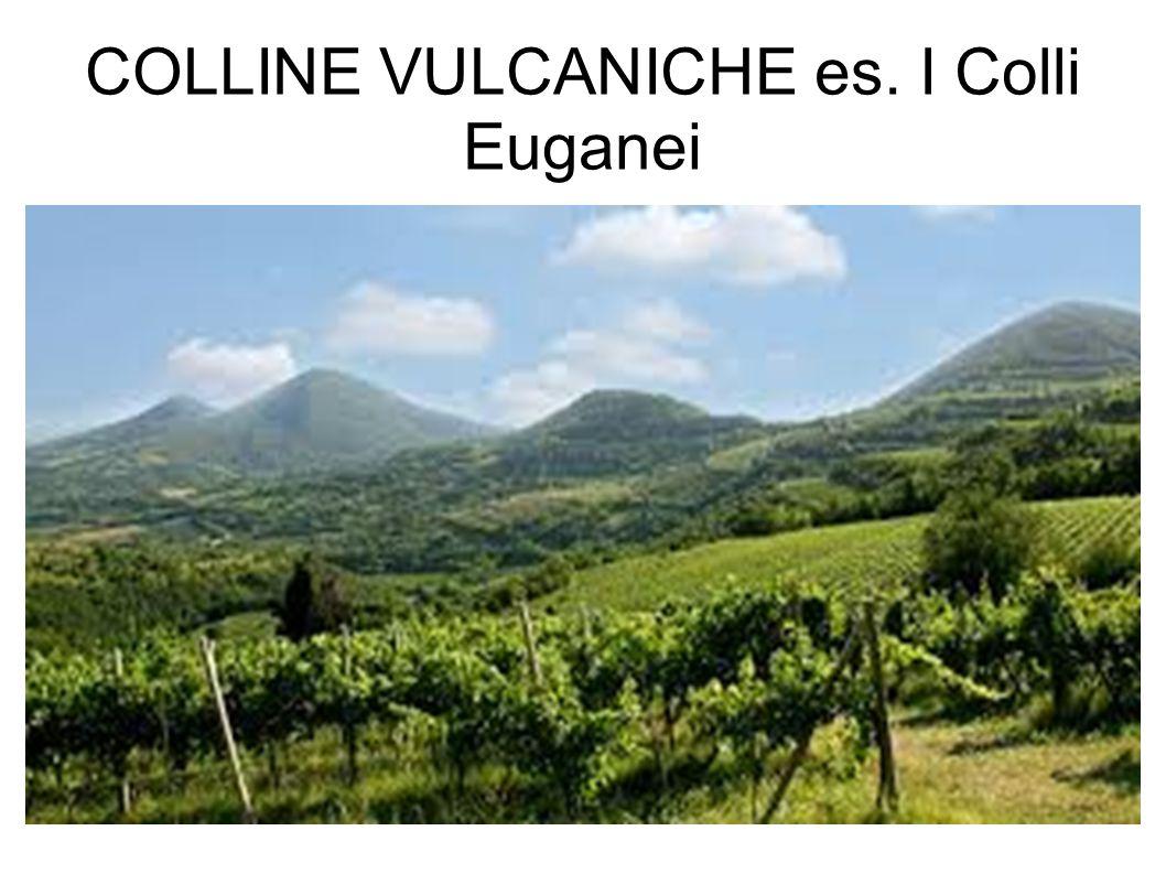 COLLINE VULCANICHE es. I Colli Euganei