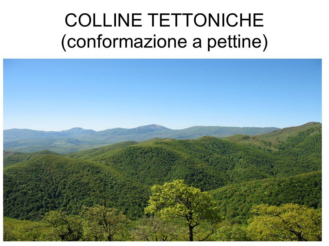 COLLINE TETTONICHE (conformazione a pettine)