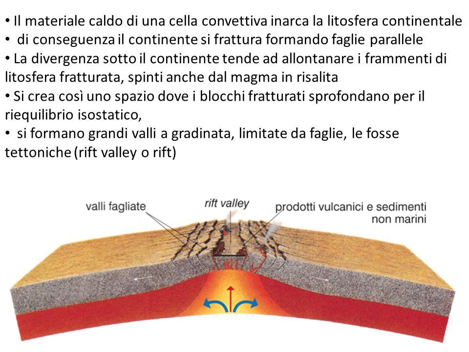 Il materiale caldo di una cella convettiva inarca la litosfera continentale
