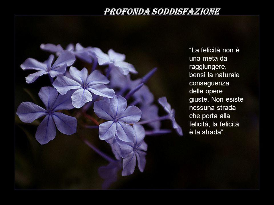 PROFONDA SODDISFAZIONE