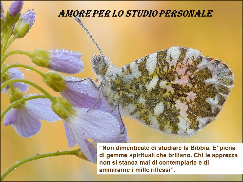 AMORE PER LO STUDIO PERSONALE
