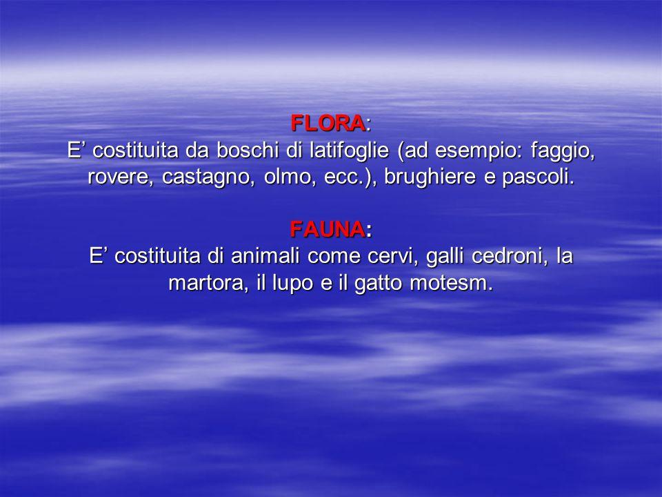 FLORA: E' costituita da boschi di latifoglie (ad esempio: faggio, rovere, castagno, olmo, ecc.), brughiere e pascoli.