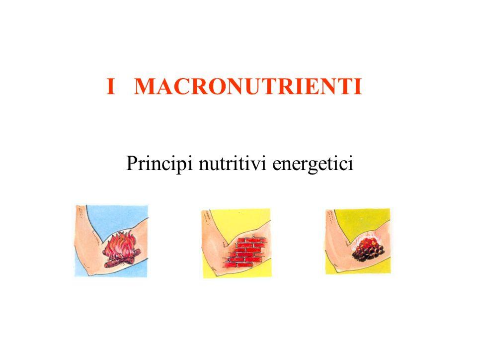 Principi nutritivi energetici