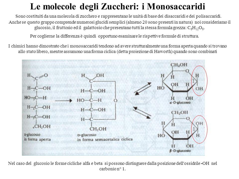 Le molecole degli Zuccheri: i Monosaccaridi