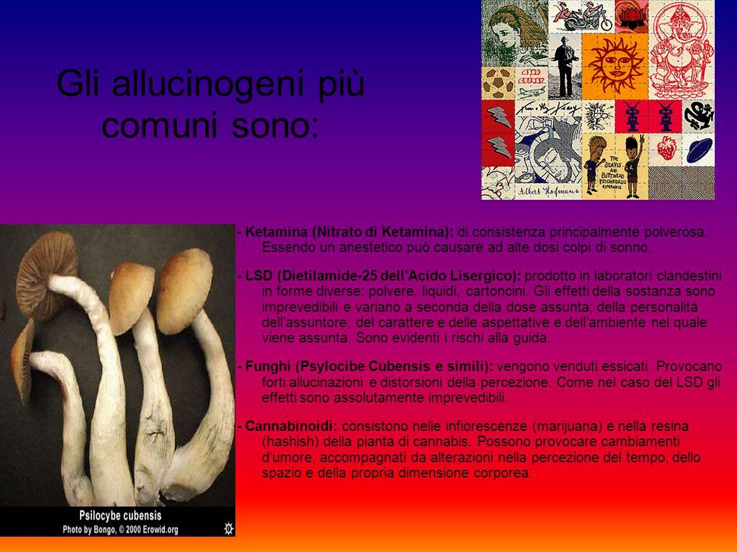 Gli allucinogeni più comuni sono:
