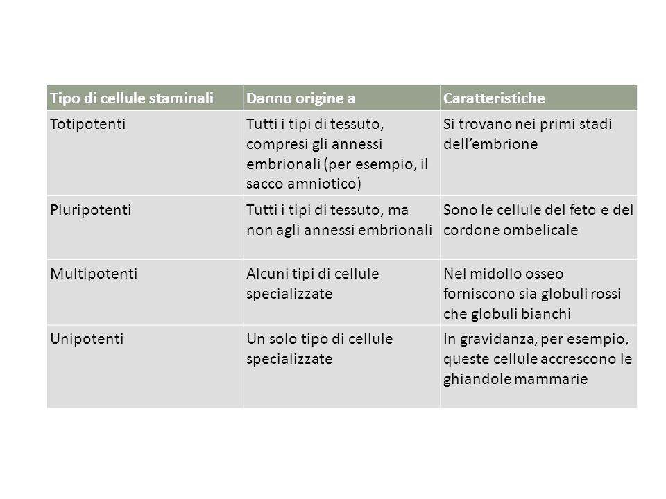 Tipo di cellule staminali Danno origine a Caratteristiche Totipotenti