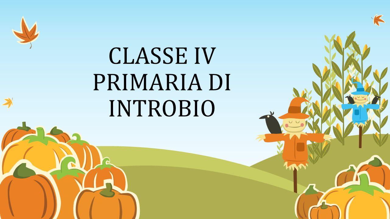 CLASSE IV PRIMARIA DI INTROBIO