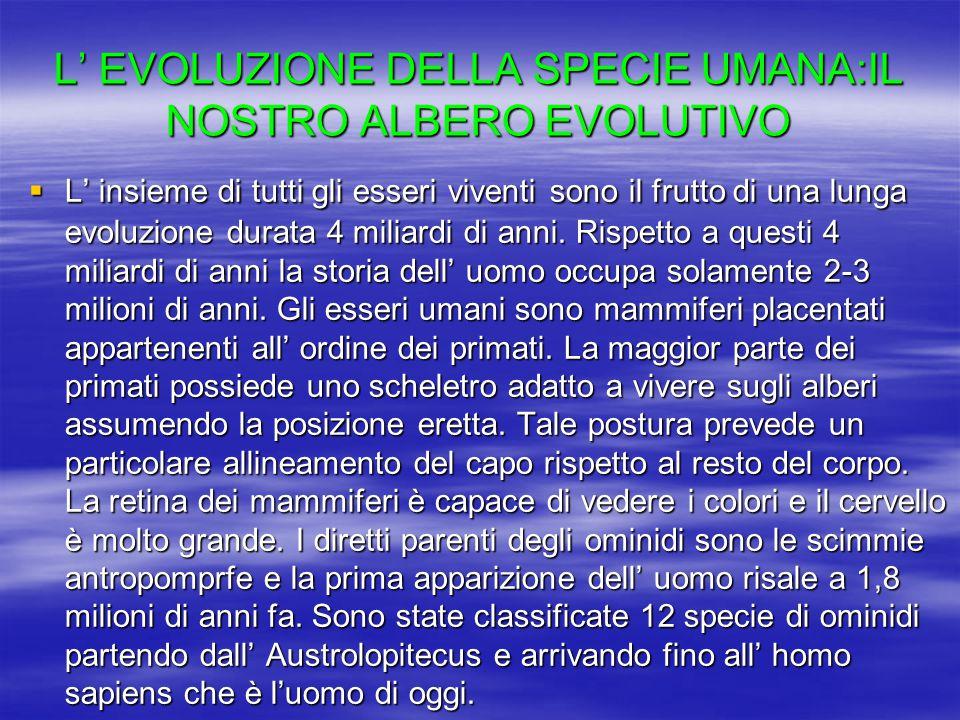 L' EVOLUZIONE DELLA SPECIE UMANA:IL NOSTRO ALBERO EVOLUTIVO