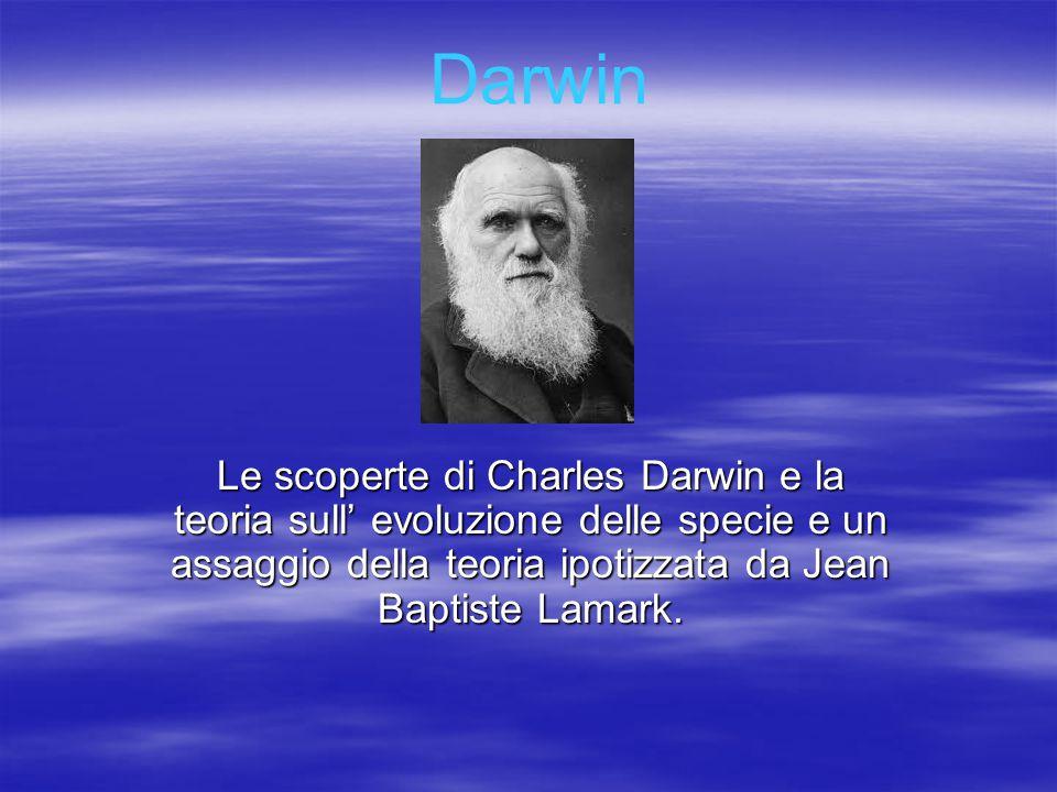 Darwin Le scoperte di Charles Darwin e la teoria sull' evoluzione delle specie e un assaggio della teoria ipotizzata da Jean Baptiste Lamark.