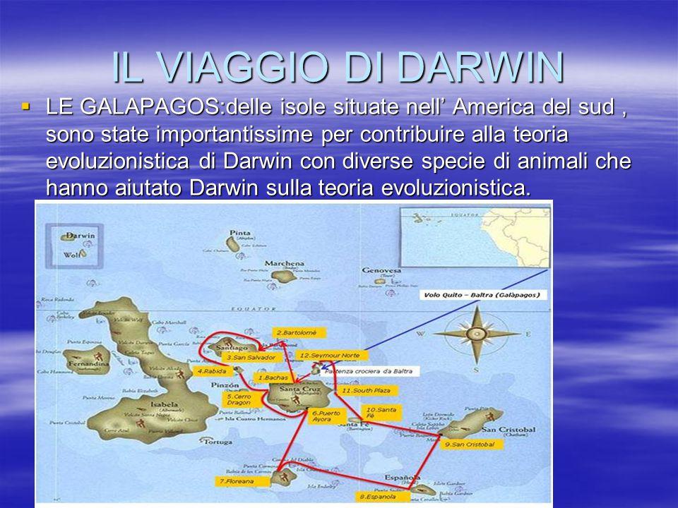 IL VIAGGIO DI DARWIN