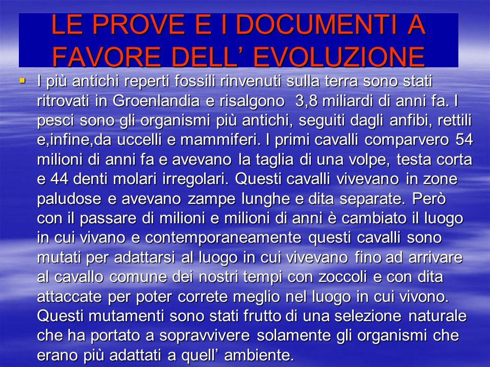 LE PROVE E I DOCUMENTI A FAVORE DELL' EVOLUZIONE