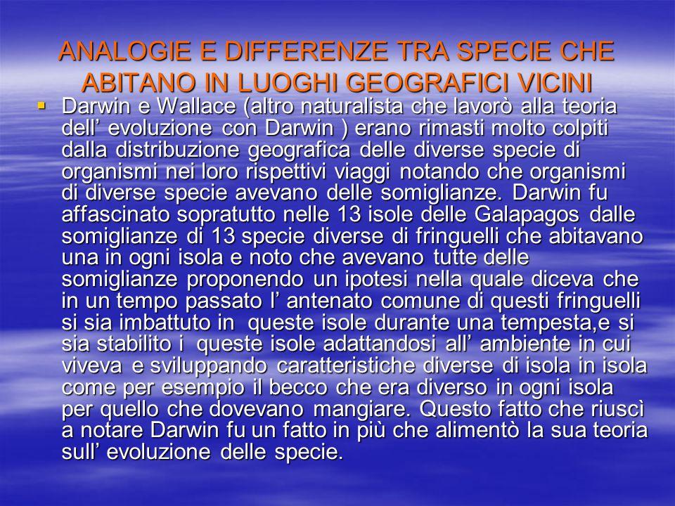 ANALOGIE E DIFFERENZE TRA SPECIE CHE ABITANO IN LUOGHI GEOGRAFICI VICINI
