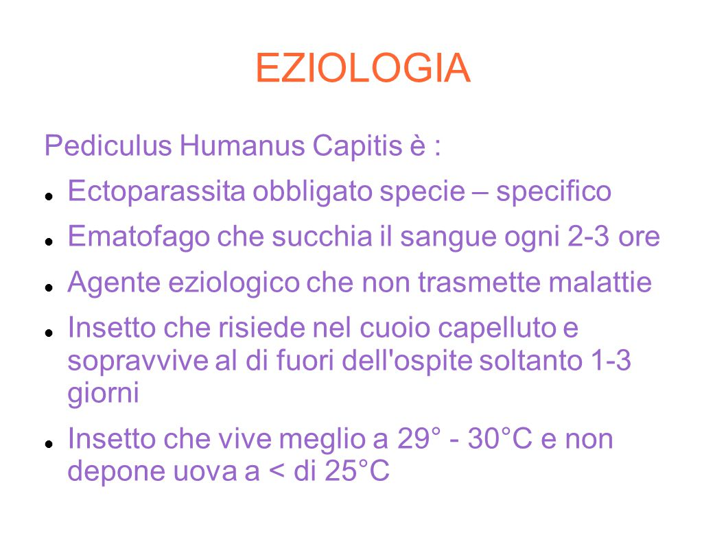 EZIOLOGIA Pediculus Humanus Capitis è :