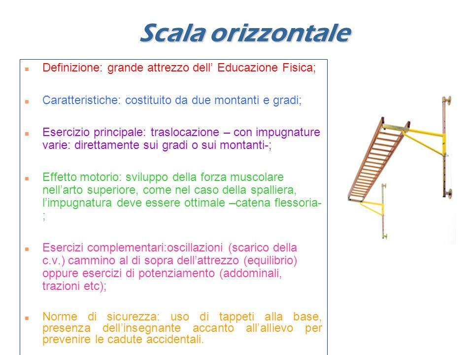 Scala orizzontale Definizione: grande attrezzo dell' Educazione Fisica; Caratteristiche: costituito da due montanti e gradi;