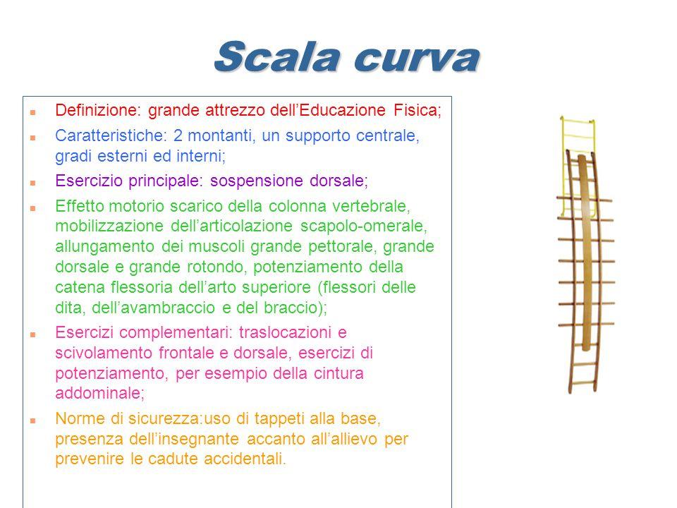 Scala curva Definizione: grande attrezzo dell'Educazione Fisica;