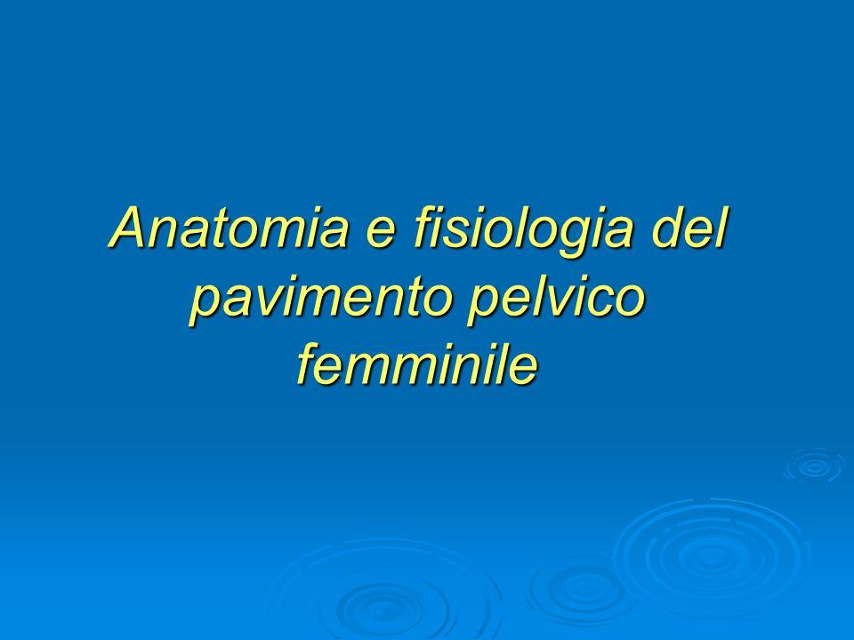 Anatomia e fisiologia del pavimento pelvico femminile