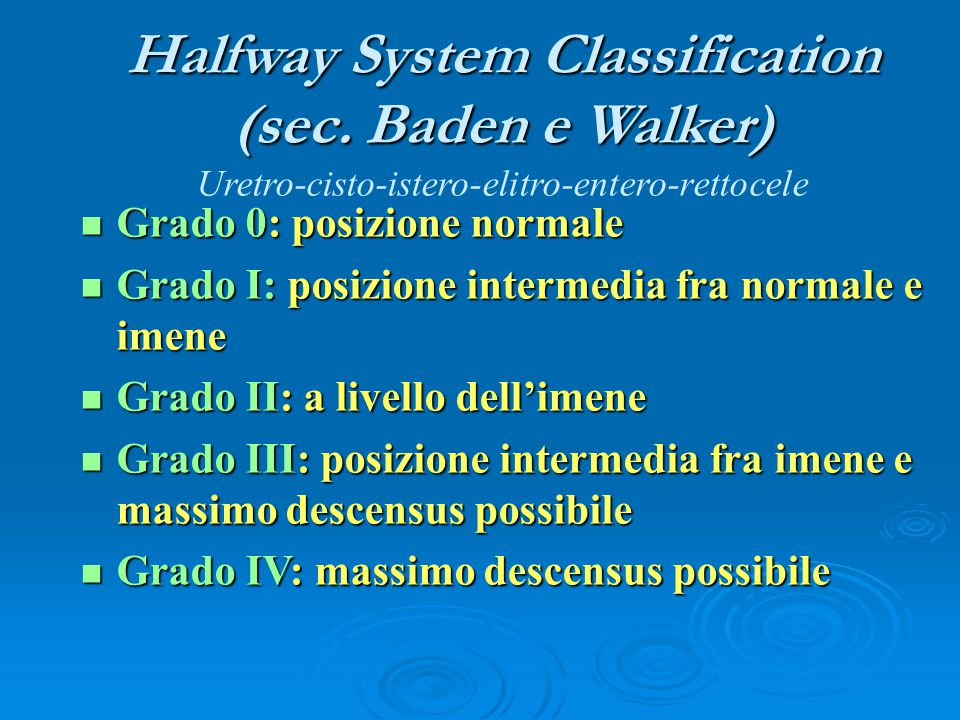 Halfway System Classification (sec
