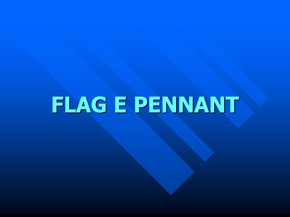 FLAG E PENNANT