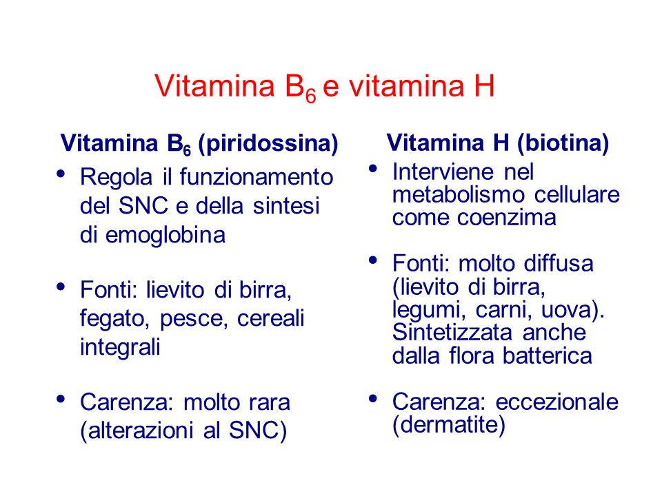 Vitamina B6 (piridossina)