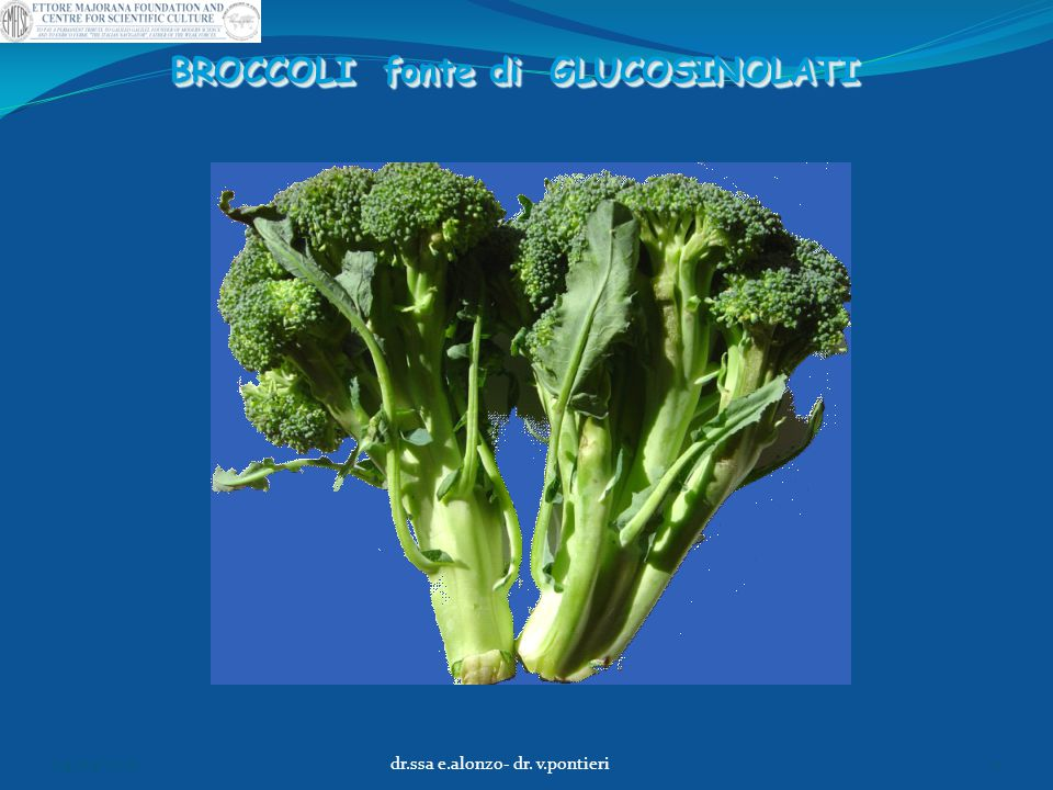 BROCCOLI fonte di GLUCOSINOLATI