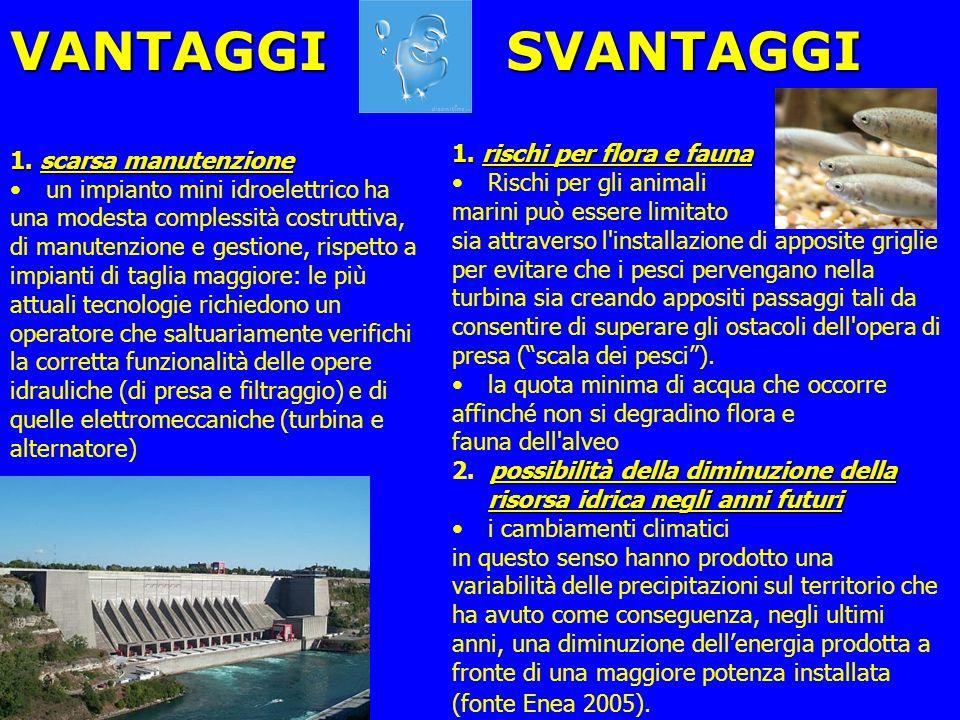 VANTAGGI SVANTAGGI 1. rischi per flora e fauna 1. scarsa manutenzione