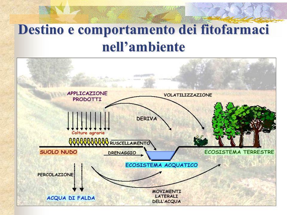 Destino e comportamento dei fitofarmaci nell'ambiente