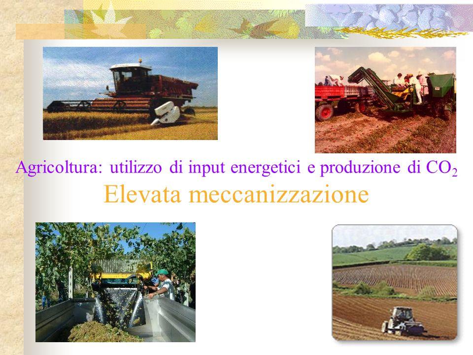 Agricoltura: utilizzo di input energetici e produzione di CO2 Elevata meccanizzazione