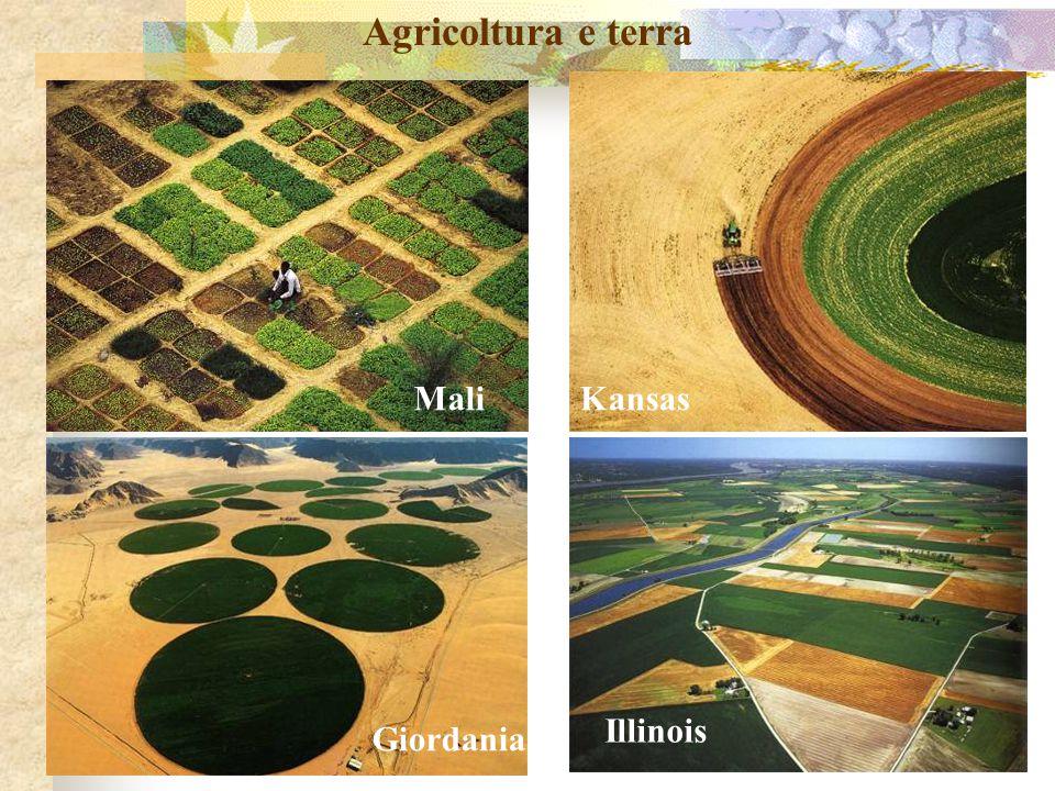 Agricoltura e terra Mali Kansas Illinois Giordania