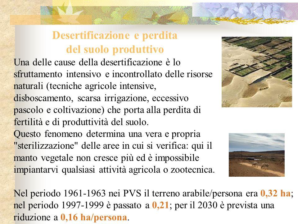 Desertificazione e perdita