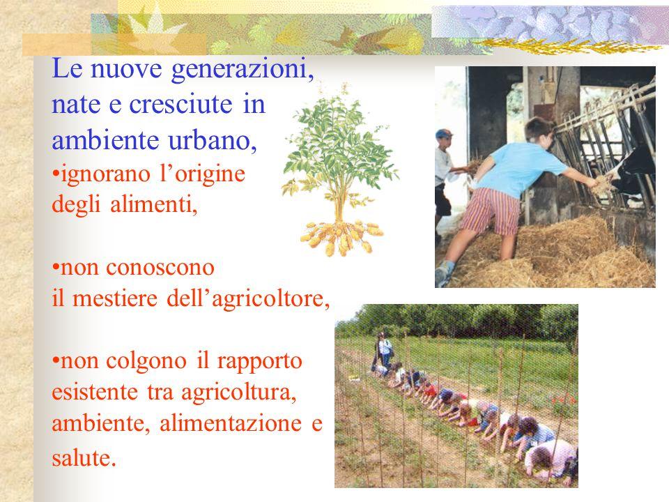 Le nuove generazioni, nate e cresciute in ambiente urbano,