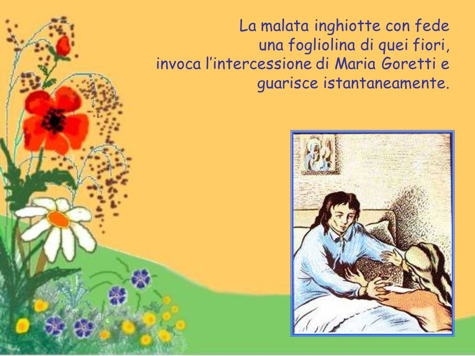La malata inghiotte con fede una fogliolina di quei fiori, invoca l'intercessione di Maria Goretti e guarisce istantaneamente.