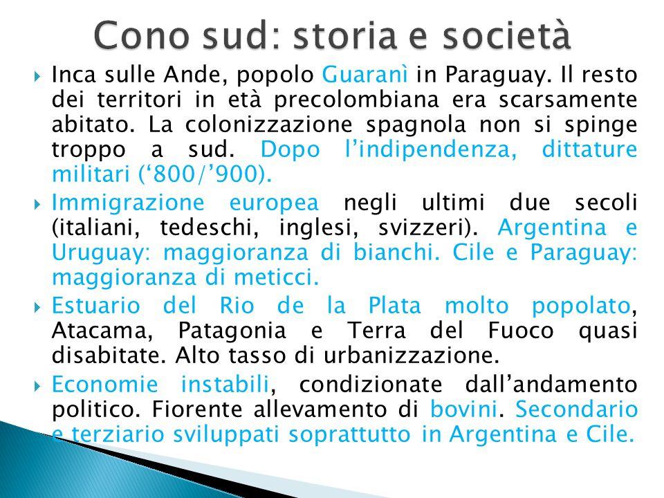 Cono sud: storia e società