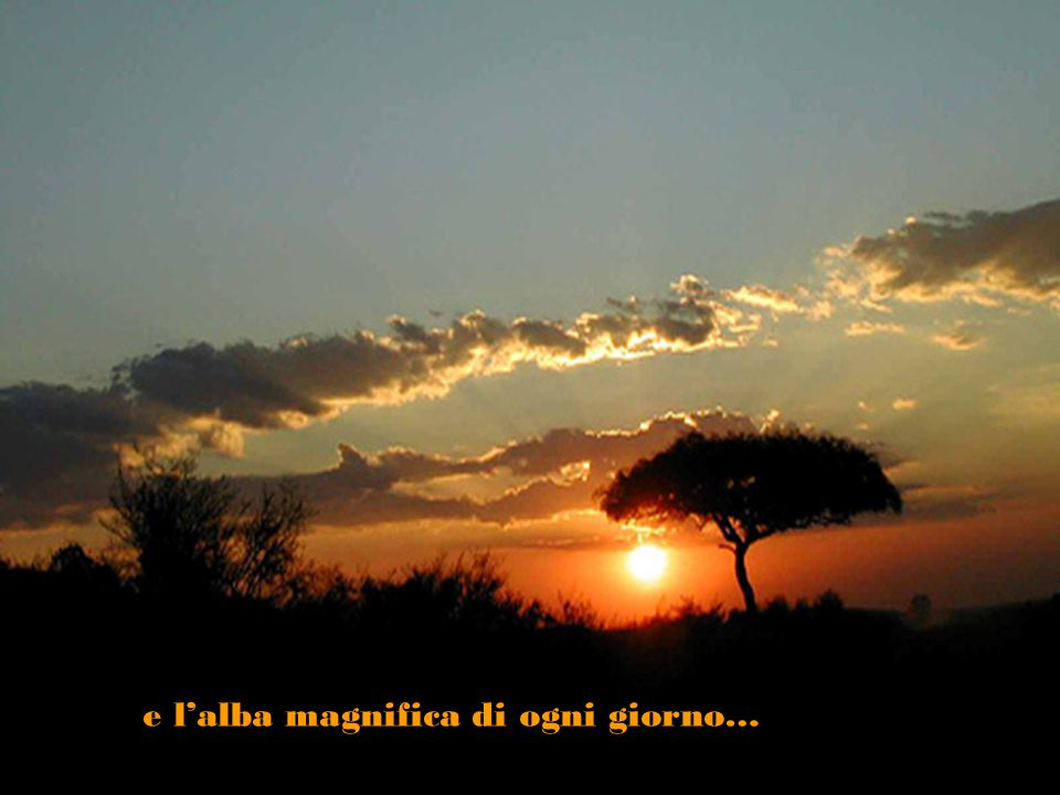 e l'alba magnifica di ogni giorno…