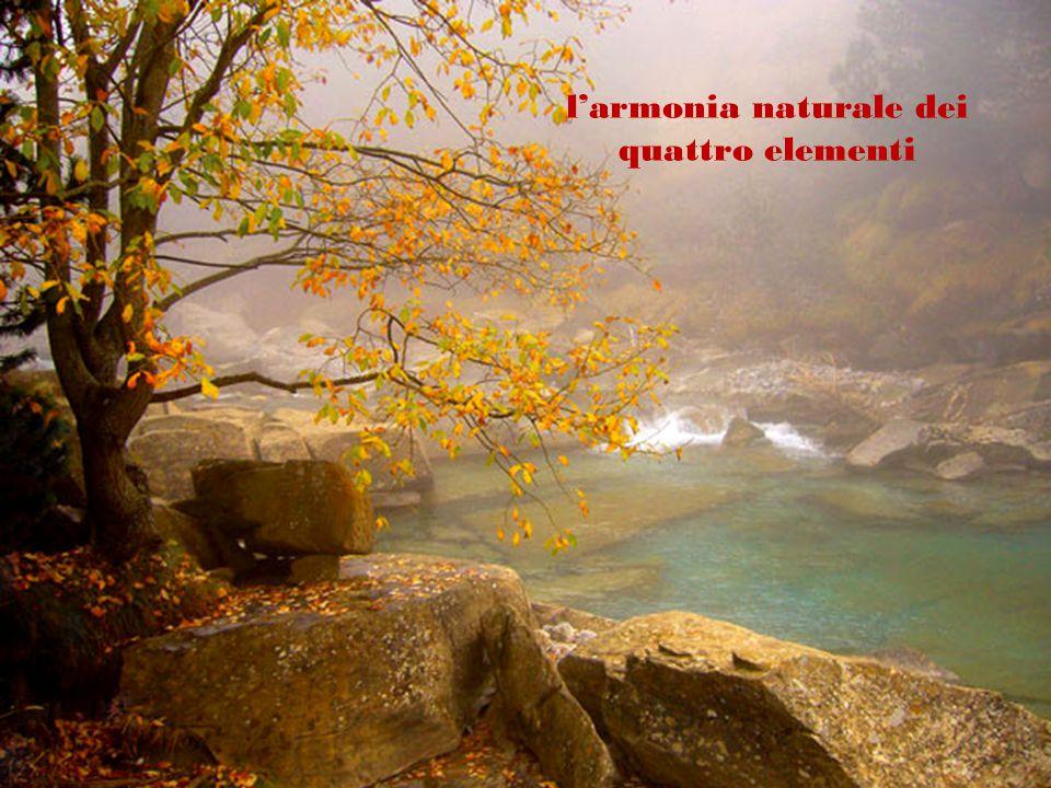 l'armonia naturale dei quattro elementi
