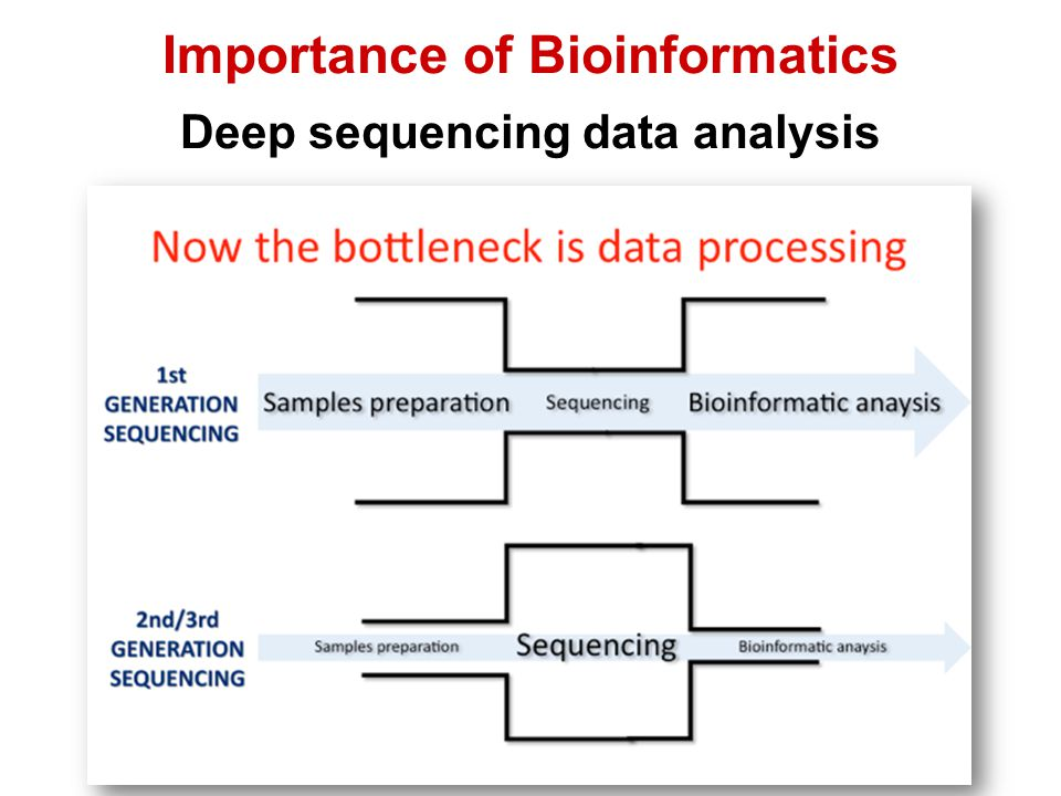 Importance of Bioinformatics Deep sequencing data analysis