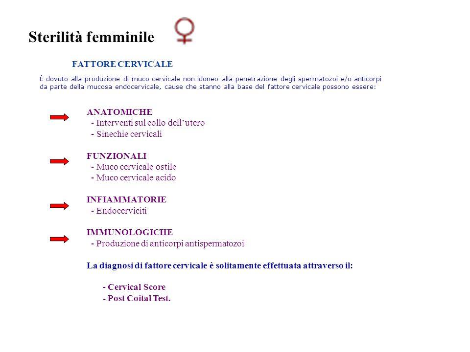 Sterilità femminile FATTORE CERVICALE