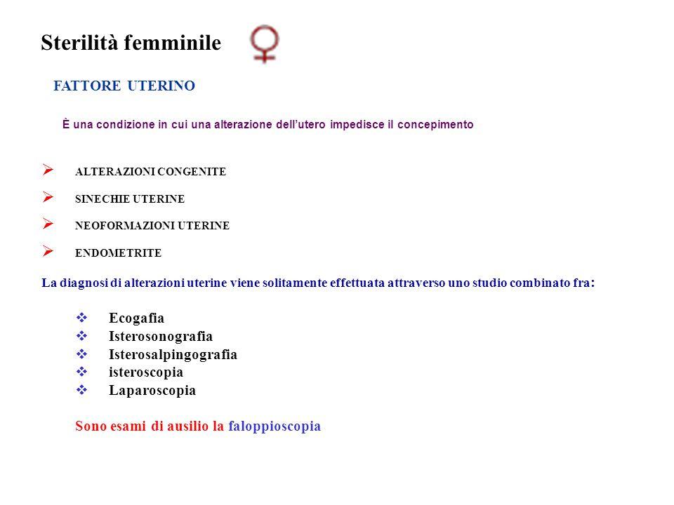 Sterilità femminile FATTORE UTERINO Ecogafia Isterosonografia