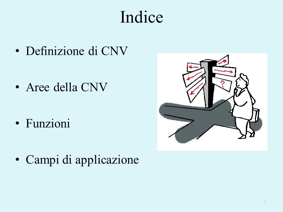 Indice Definizione di CNV Aree della CNV Funzioni