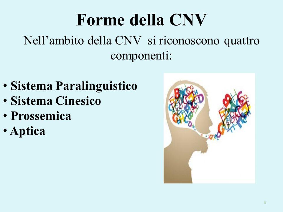 Nell'ambito della CNV si riconoscono quattro componenti: