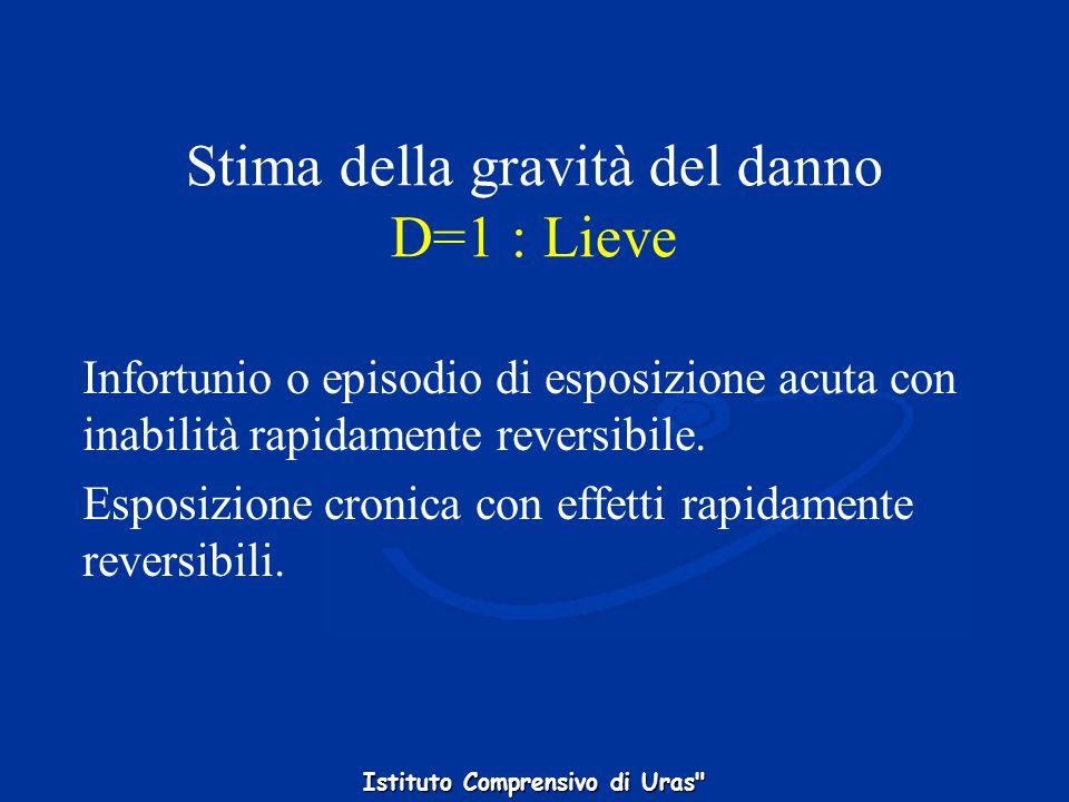 Stima della gravità del danno D=1 : Lieve