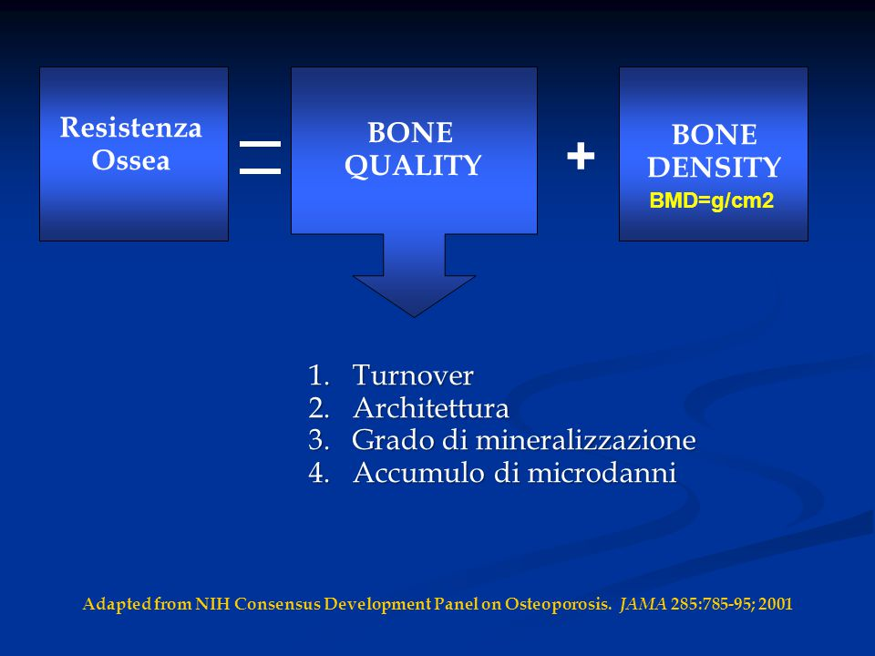 + BONE Resistenza QUALITY BONE Ossea DENSITY Turnover Architettura