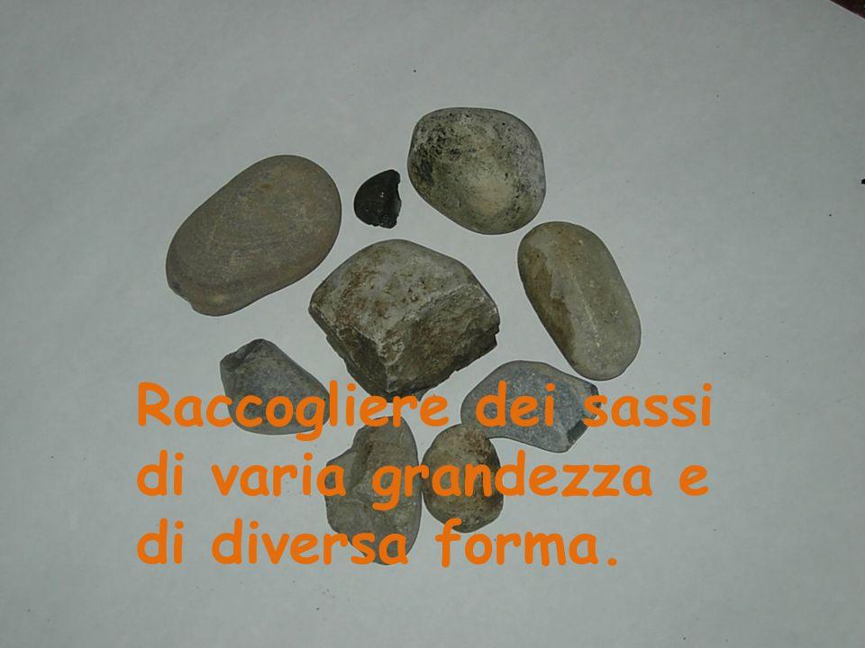 Raccogliere dei sassi di varia grandezza e di diversa forma.