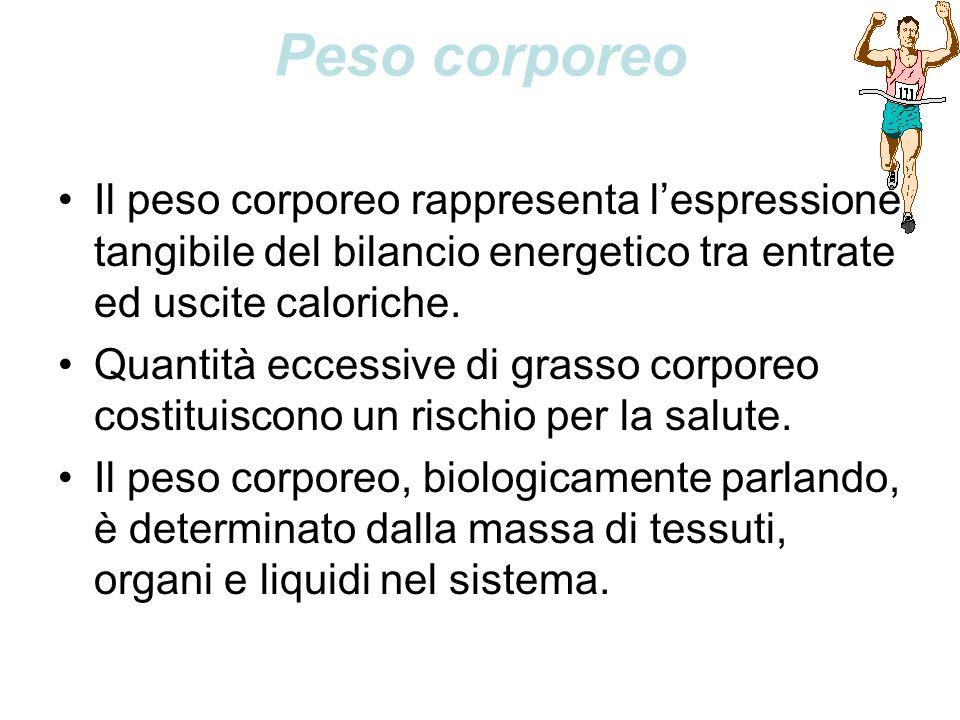 Peso corporeo Il peso corporeo rappresenta l'espressione tangibile del bilancio energetico tra entrate ed uscite caloriche.